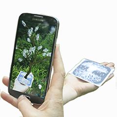 app-in-use-tree-hand-lighter_240x240